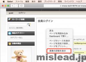 Safariで開発者向けツールの表示完了