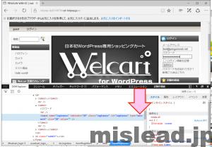 パスワードが非表示になっている画面 デペロッパーモードでpasswordをtextに打ち替える internet explorer