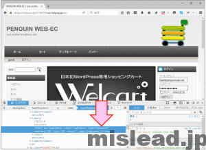 パスワードが非表示になっている画面 デペロッパーモードでpasswordをtextに打ち替える FireFox